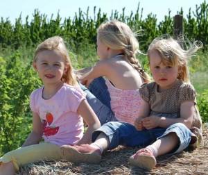 девочки играют на площадке